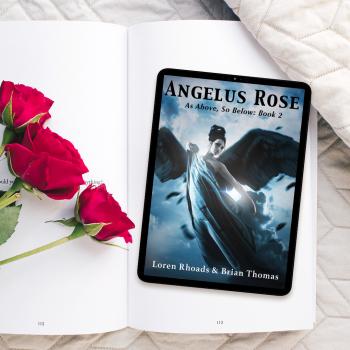 2 angelus rose teaser 4