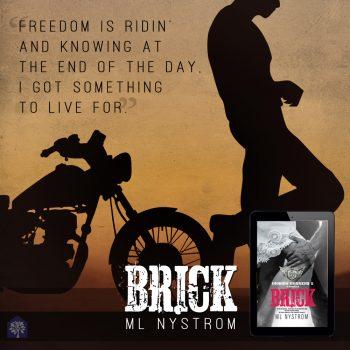 5 brick teaser 2
