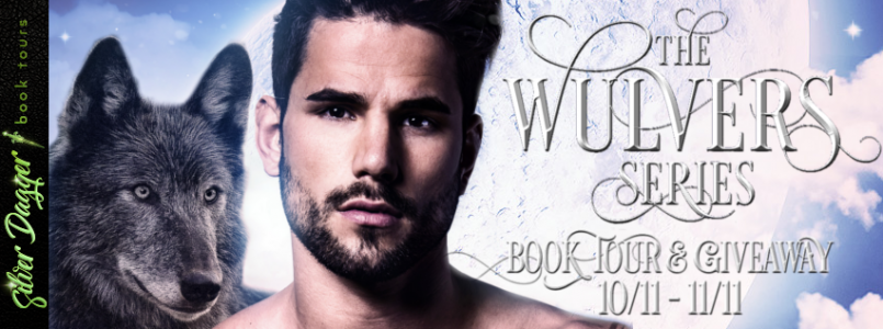the wulvers series banner