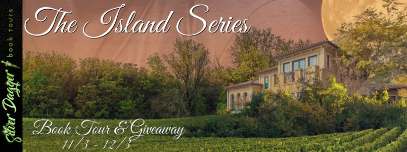 the island series tour banner