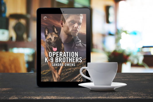 operation k9 brothers teaser 3
