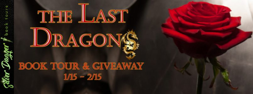the last dragon banner