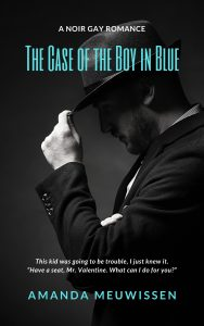 The Case of the Boy in Blue eBook Cover